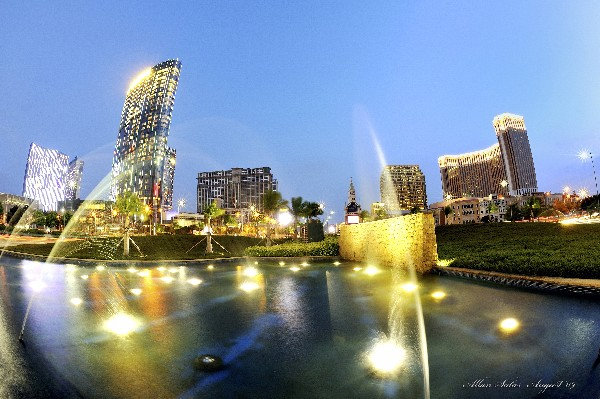 Hotel industry's revenue grows 29 pct in 2010