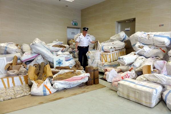 Customs collar trio for smuggling 166 million yuan worth of agarwood