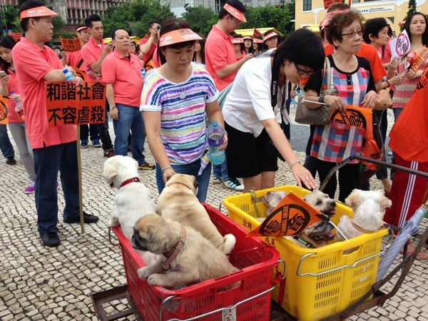 Pet lovers march for animal protection law