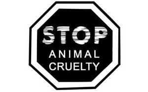 Group says animal abuse to be criminalised