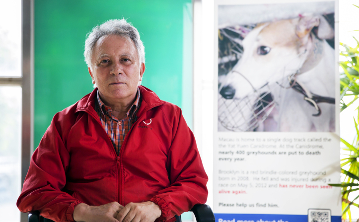Albano Martins faces dock over dog abuse video