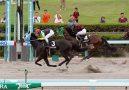 Macau Jockey Club