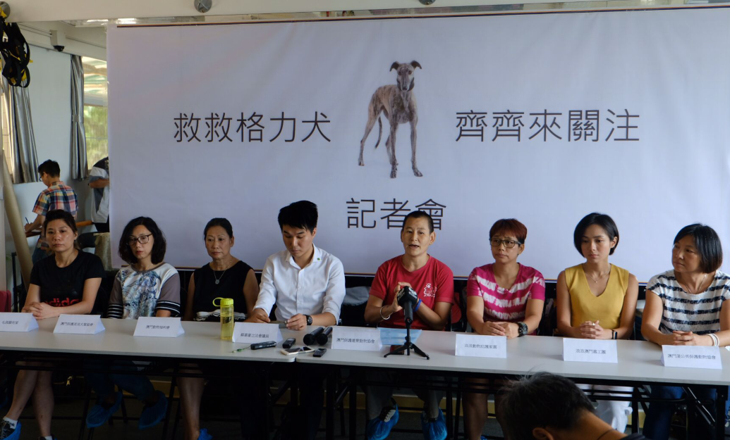 8 groups urge govt to ensure greyhounds won't end up on mainland