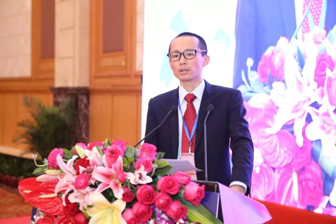 Hengqin to continue supporting Macau's diversification: finance chief