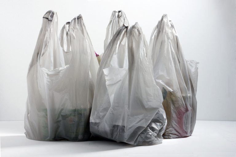 Plastic bag charge scheme starts 'smoothly': government