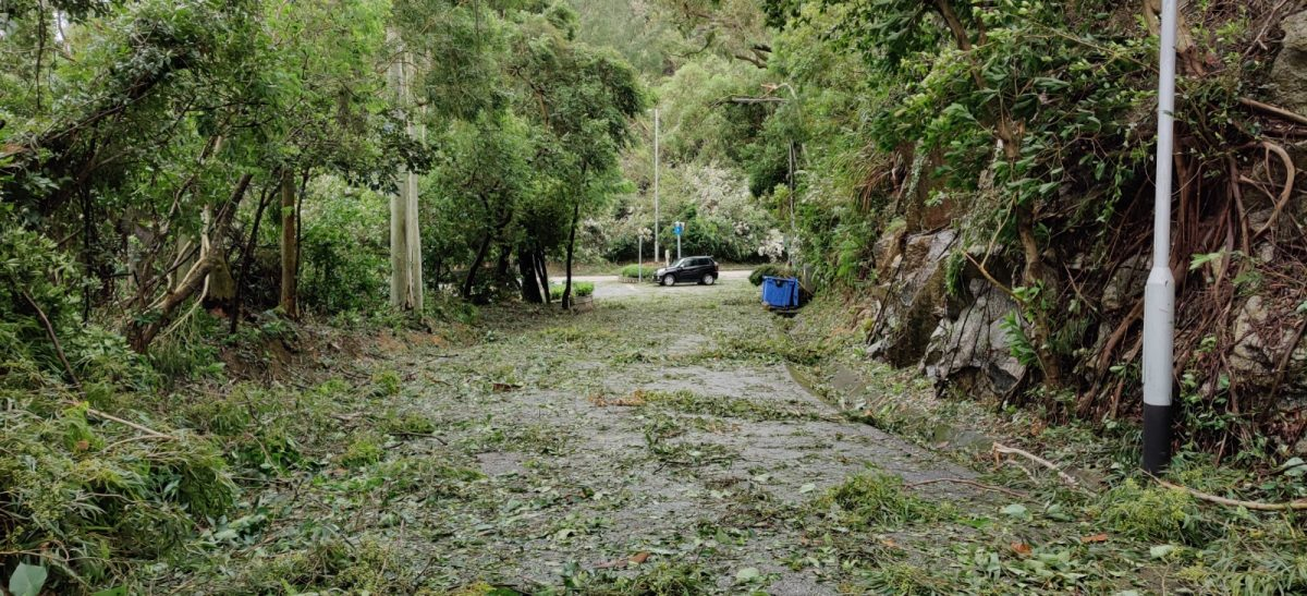 Macao spared major damage despite signal No. 10 during Typhoon Higos