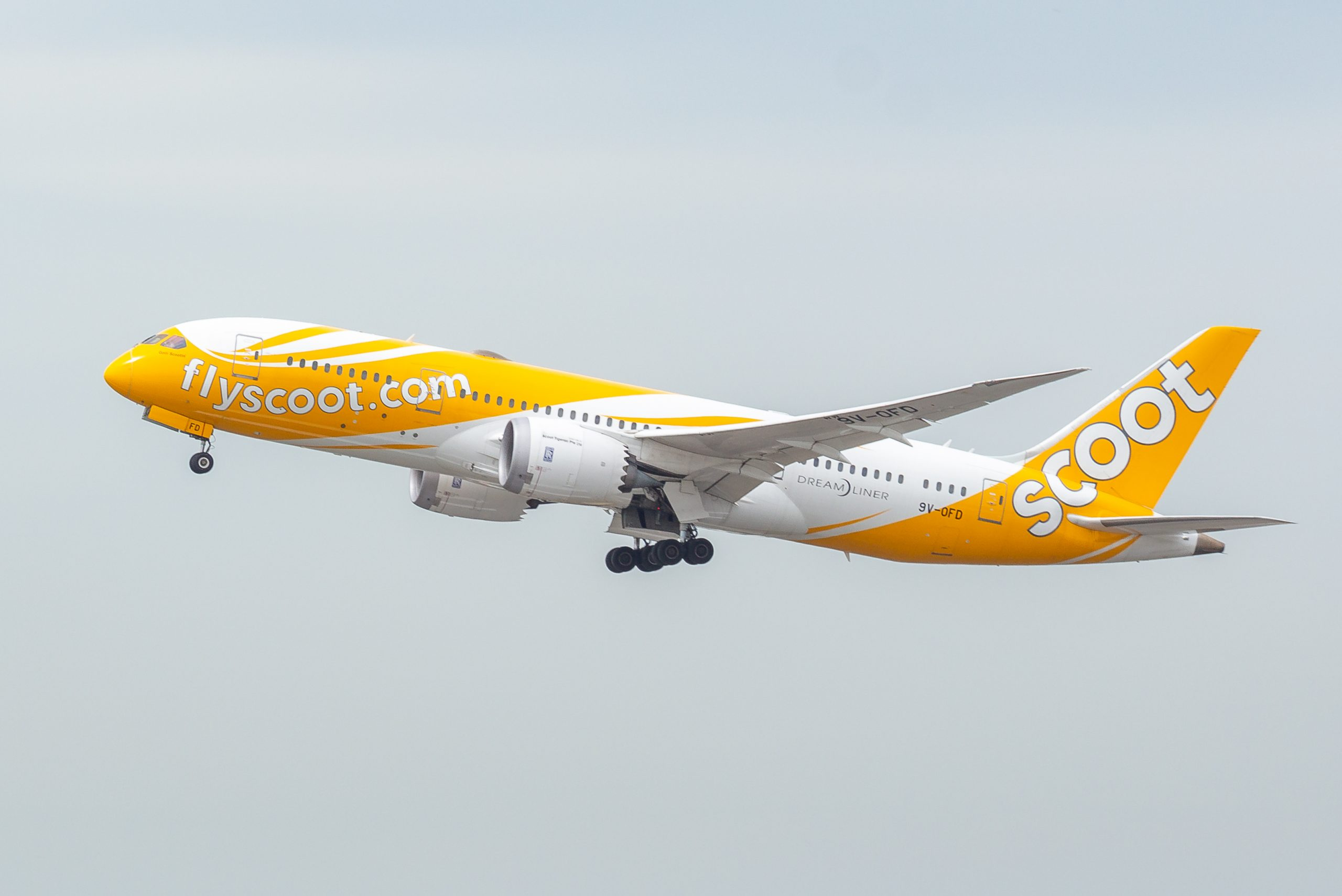 Scoot Singapore travel