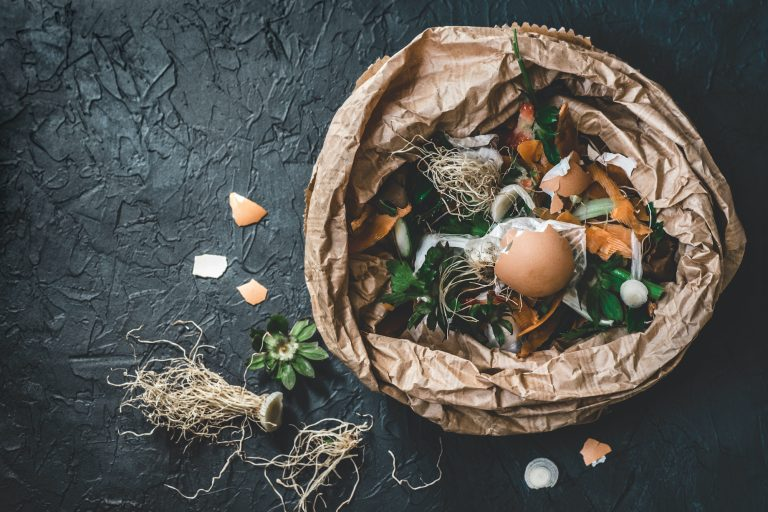 food waste and sustainability